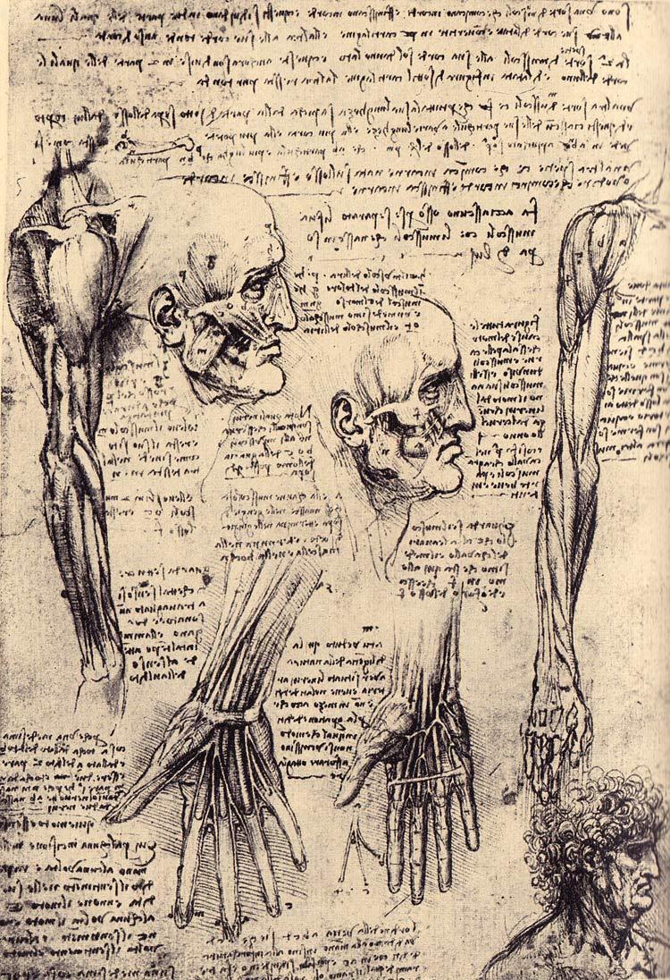 The Sketches of Leonardo - Retinart